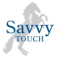 Savvy Touch