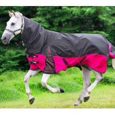 Horse Covers (113)