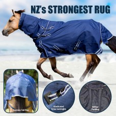 Horse Covers (139)