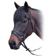 English Bridles and Acc (45)