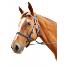 Enzo Bitless Bridle