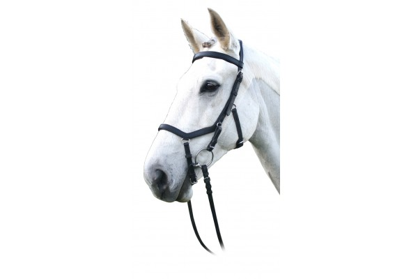 Enzo Competition Bridle