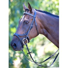 English Bridles and Acc (44)