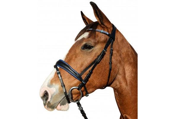 Enzo Windsor Show Bridle
