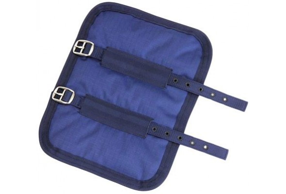 Shires Chest Expander
