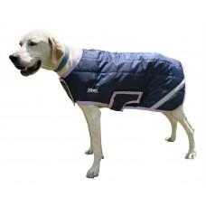 Dog (17)