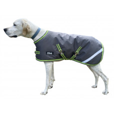Kiwi 200g Dog Coat with Surcingle
