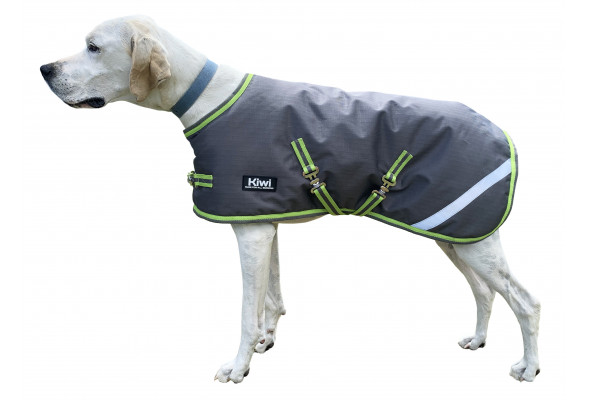 Kiwi 200g Dog Coat with Surcingle