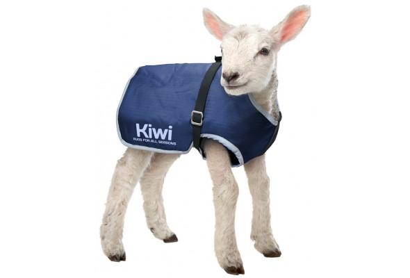Kiwi Lamb Cover Synthetic