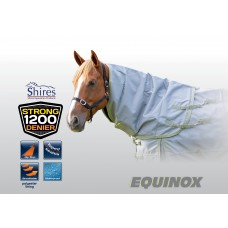 Shires 1200 Equinox Neck