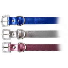 Rufz Metallic Dog Collar