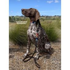 Enzo Polo Leather Dog Lead