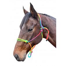 Enzo Rainbow Nylon Rope Halter
