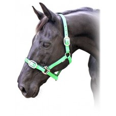 Prima Cushion Halter