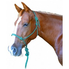 Enzo Rope Halter & Lead Set