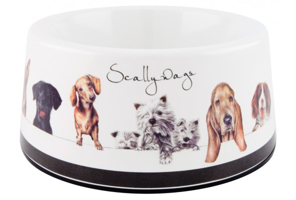 Ashdene Scallywags Pet Bowl