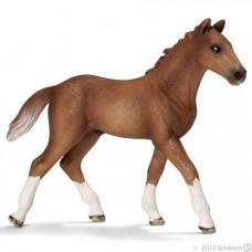 Schleich - Hanoverian Foal