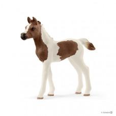Schleich - Pintabian Foal