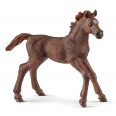 Schleich - English Thoroughbred Foal
