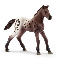 Schleich - Appaloosa Foal