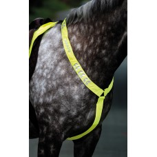 Shires Equiflector Breastplate