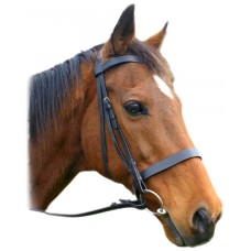 English Bridles and Acc (35)