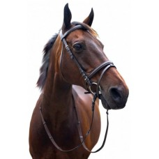 English Bridles and Acc (55)