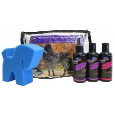 Lillidale Handy Size Travel Pack