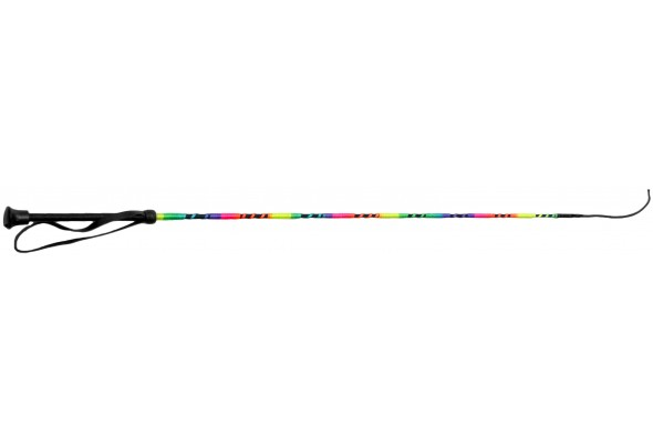 Dressage Whip Rainbow